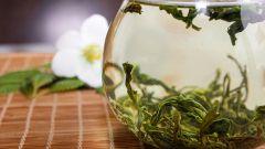 Особенности чая Би Ло Чунь