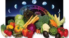 Лунный календарь работ дачника на январь 2016 года