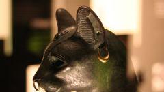 История кошек в Египте