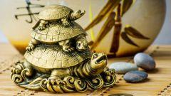 Значение черепахи по фэншуй