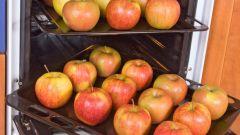 Как запечь яблоки в духовке
