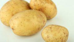 5 простых, но оригинальных блюд из картофеля