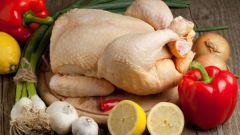 Пять блюд из курицы к праздничному столу