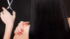 Известные приметы о стрижке волос