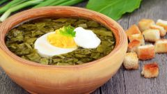 Как приготовить суп с консервированным щавелем?