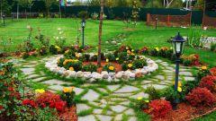 Какие виды клумб подходят для садового участка