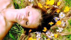 Какие травы использовать для роста волос