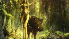 Сочетание гороскопов: Свинья-Стрелец