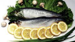 Where did the herring