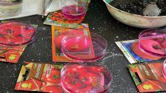 Обеззараживание семян: сухой и влажный способ