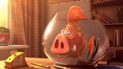 Сочетание гороскопов: Свинья-Рыбы