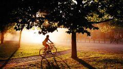 Чем заменить утренние пробежки