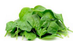 Полезные свойства сока шпината