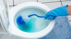 Как и чем чистить унитаз от мочевого камня