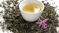 Все, что нужно знать о белом чае