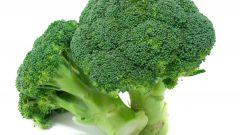 9 полезных и важных продуктов питания