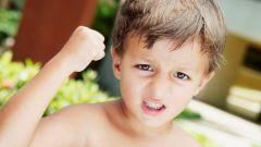 Если ваш ребенок – маленький задира