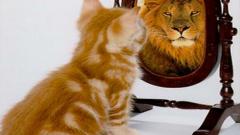 Техники повышения самооценки