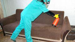 Как избавиться от клопов в диване