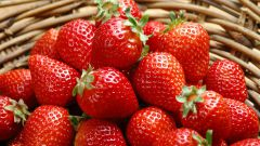 5 components of an excellent crop of strawberries