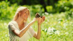 Как влияет уровень серотонина на настроение