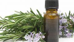 Свойства эфирного масла розмарина