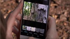 Что такое мобильная фотография
