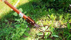 Как избавиться от сорняков без химических средств