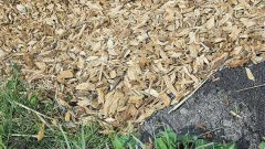 How to choose the right mulch