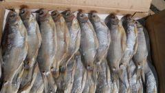 Как солить и сушить рыбу дома