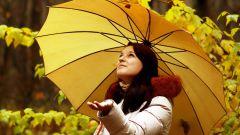 Как и по каким параметрам выбрать зонт
