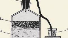 Как делать вино дома - рецепт со сливами