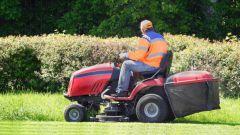 Как выровнять траву на своем газоне