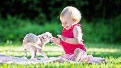 Ребенок и домашние животные: простые правила