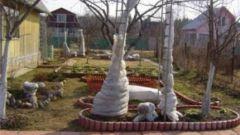 Готовим сад к зимнему периоду