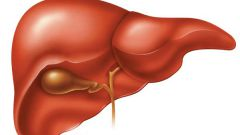 Почему возникает гепатит, его виды и профилактика