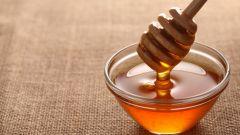 Как выбрать свой сорт мёда?