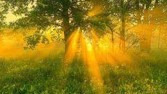 Как пережить солнечное затмение