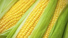 Сколько нужно варить кукурузу