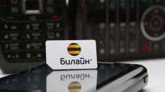 Как разблокировать заблокированную СИМ-карту Билайн
