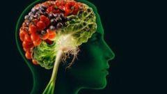 Как обеспечить полноценное питание мозга