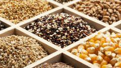 Как купить семена овощей в интернет-магазине