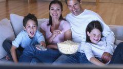 Какие фильмы про животных посмотреть с детьми