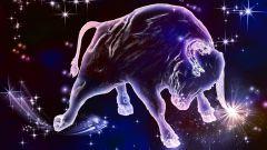 Каким будет гороскоп Тельца на 2018 год