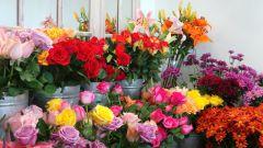 Как не попасть на уловки цветочных магазинов