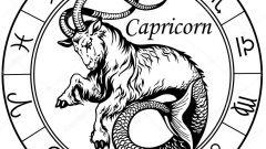 Какой гороскоп на 2018 год для знака Козерог