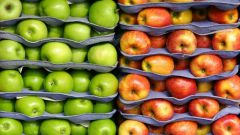 Как правильно хранить яблоки зимой в домашних условиях