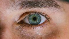 Как убрать круги под глазами в домашних условиях