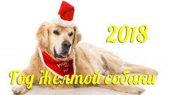 Как встретить год Желтой Земляной Собаки
