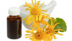 Арника (гомеопатия): инструкция по применению